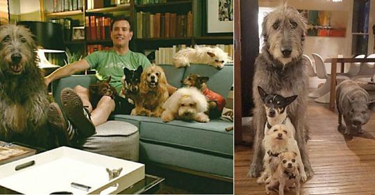 Man Adopts All Senior Animals After His Dog Dies
