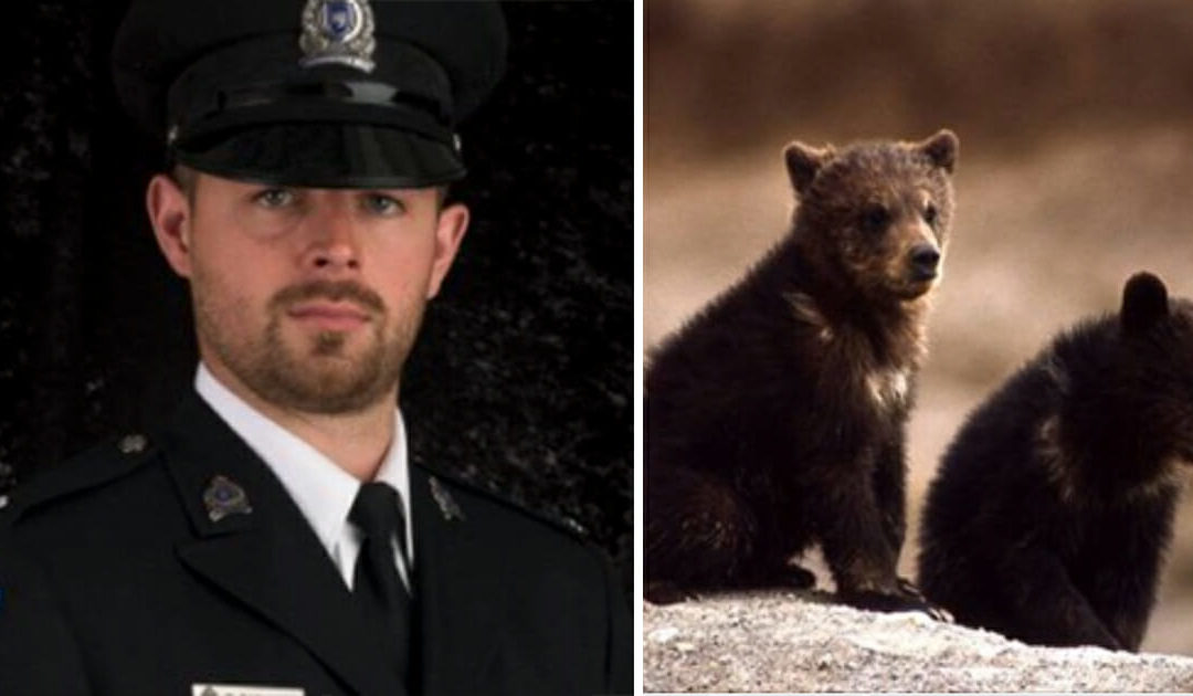 Conservation Officer Fired For Refusing To Kill Bear Cubs Wins Legal Battle Over Termination