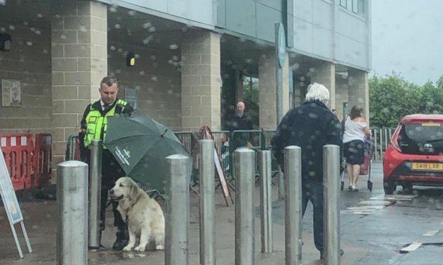 Security Guard Breaks The Internet After Covering Dog With Umbrella During Rainy Weather
