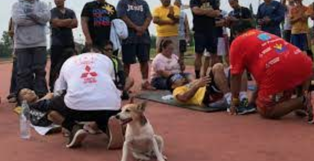 Pacman, Senator Pacquiao's Loyal Dog and Training Partner Died After Being Accidentally Run Over By A Car