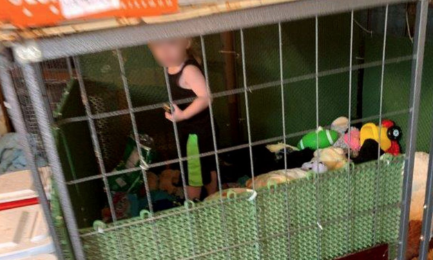 Toddler Found in Tiny Dog Cage  Surrounded by 600 Animals Including Snakes And Rodents