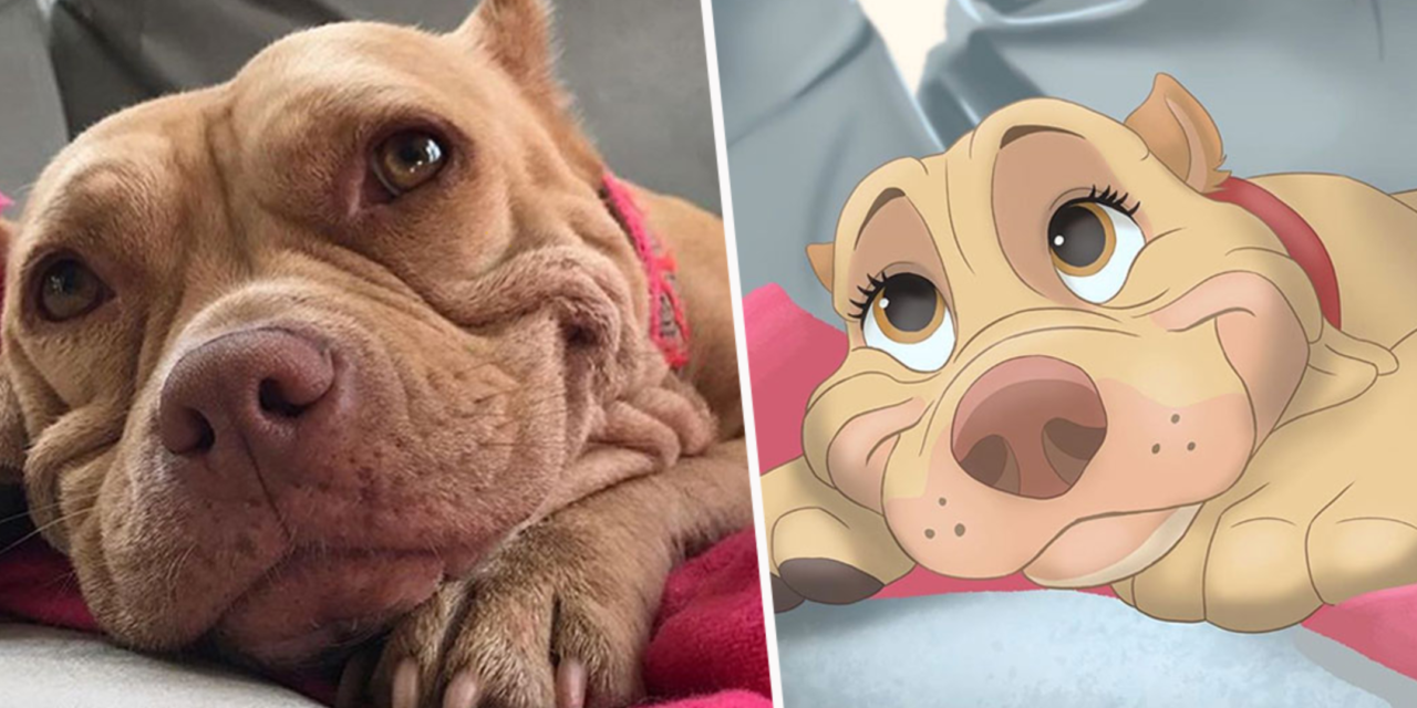 This Artist Disneyfies People's Pet Photos And It's Amazing