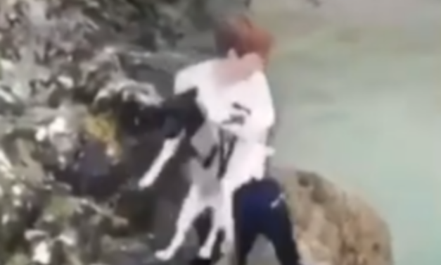 Abusive Thugs Throw Terrified Puppy From The Edge Of A Cliff