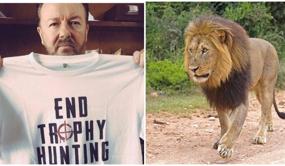 Ricky Gervais Is Determined To Put An End To Trophy Hunting, Saying It's 'Humanity At Its Very Worst'
