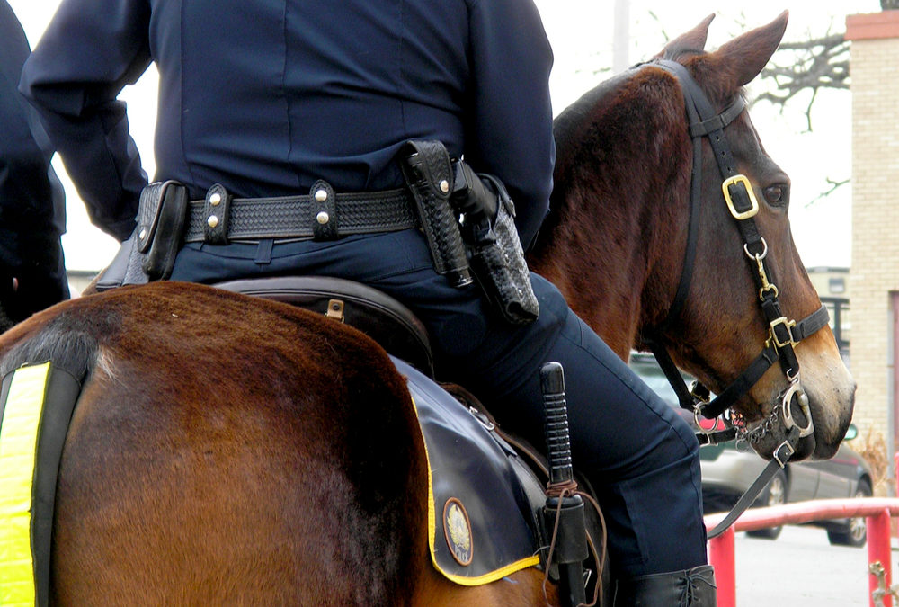 VIDEO: A Protester Sneaks Up On Police Officer And His Horse Kicks And Sends Her Sailing For Animal Cruelty