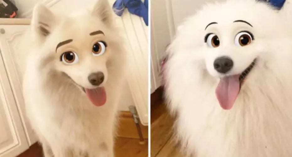 New Snapchat Filter That Makes Your Dog Look Like a Disney Character