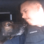 Officer Honors K-9 Partner After 8 Years Of Service With A Final Radio Call