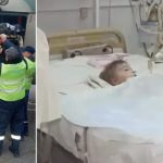 Boy, 2, is fighting for life after dogs ripped off his genitals while parents were celebrating his birthday in Ukraine