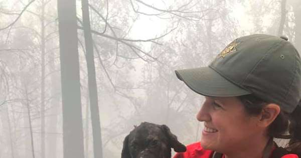Rescuers Find Puppy in Ashes of Area Destroyed in Calif. Wildfires: A 'Welcomed Discovery'
