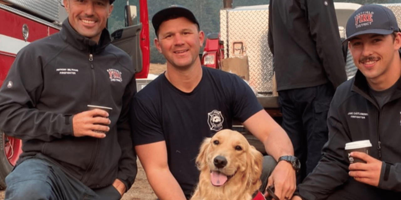 Therapy Dog Provides Comfort To Firefighters Battling The California Wildfires