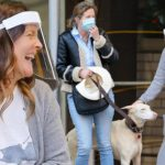 Drew Barrymore Saves A Dog That Was Hit By A Car In New York