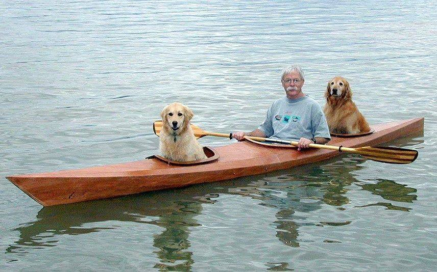 Man Builds A Customized Dog-Friendly Kayak