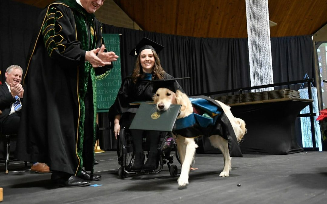 Service Dog Graduates From Grad School Together With Owner