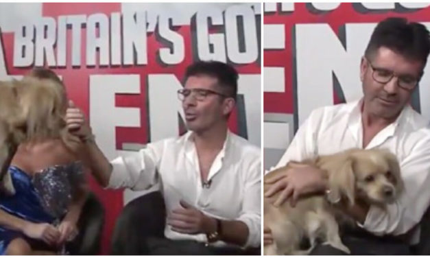 Simon Cowell Gets Surprised With A Very Special Pup